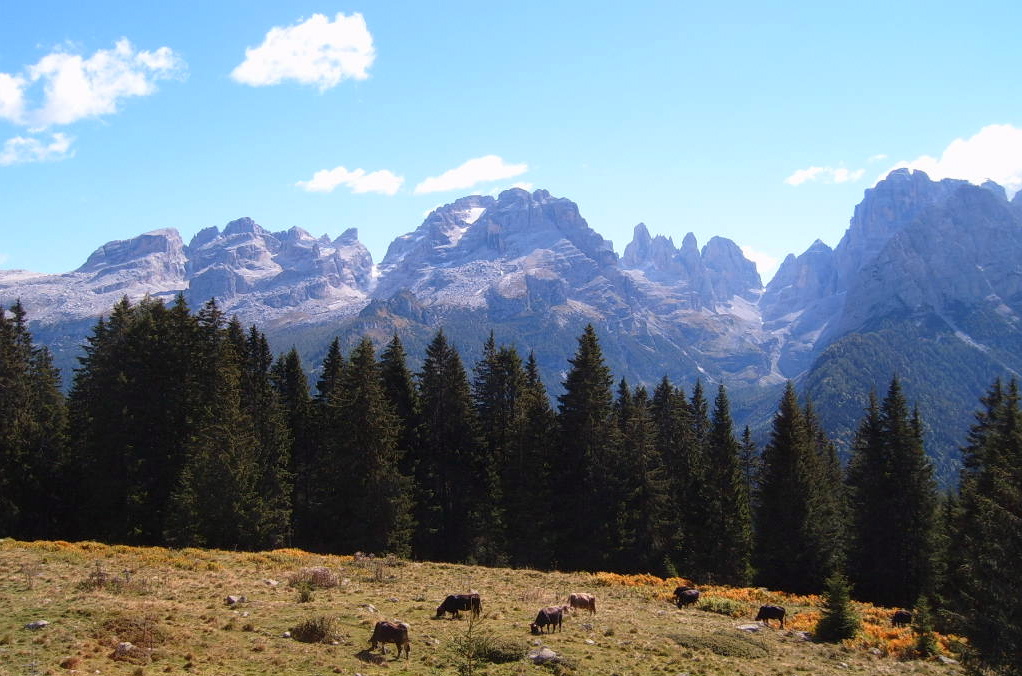 Dolomiti del Trentino